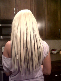 Pretty extensions home my name is elise and i install hair extensions in calgary for women who want longer fuller or multicolored hair the prices are very reasonable pmusecretfo Choice Image